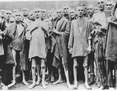 Image result for US freeing concentration camps